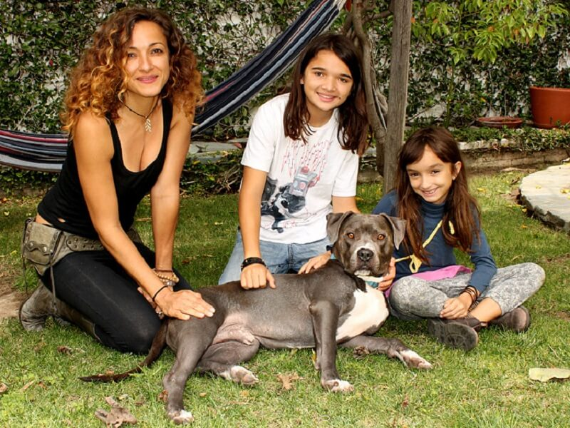 A Manicure Leads To The Rescue Of A Starving Dog Lucky Puppy Magazine